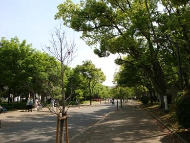 長居公園1.jpg